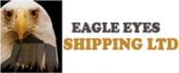 Eagle Eyes Logo